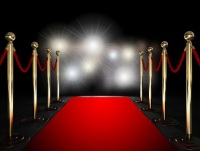Rope barrier with red carpet and flash light