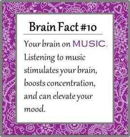 brain fact on music