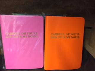 in-novel-notebook